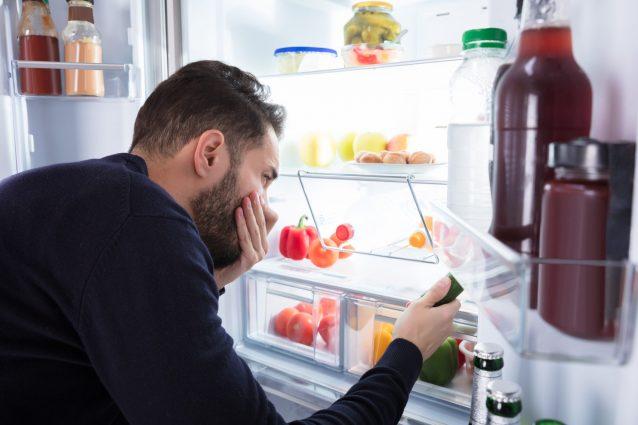 استشمام بوی بد از یخچال
